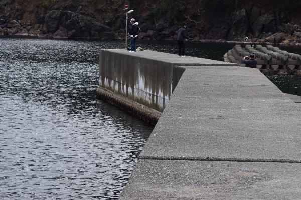 矢代漁港堤防外側写真
