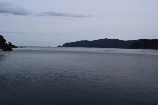 湾口を写した写真
