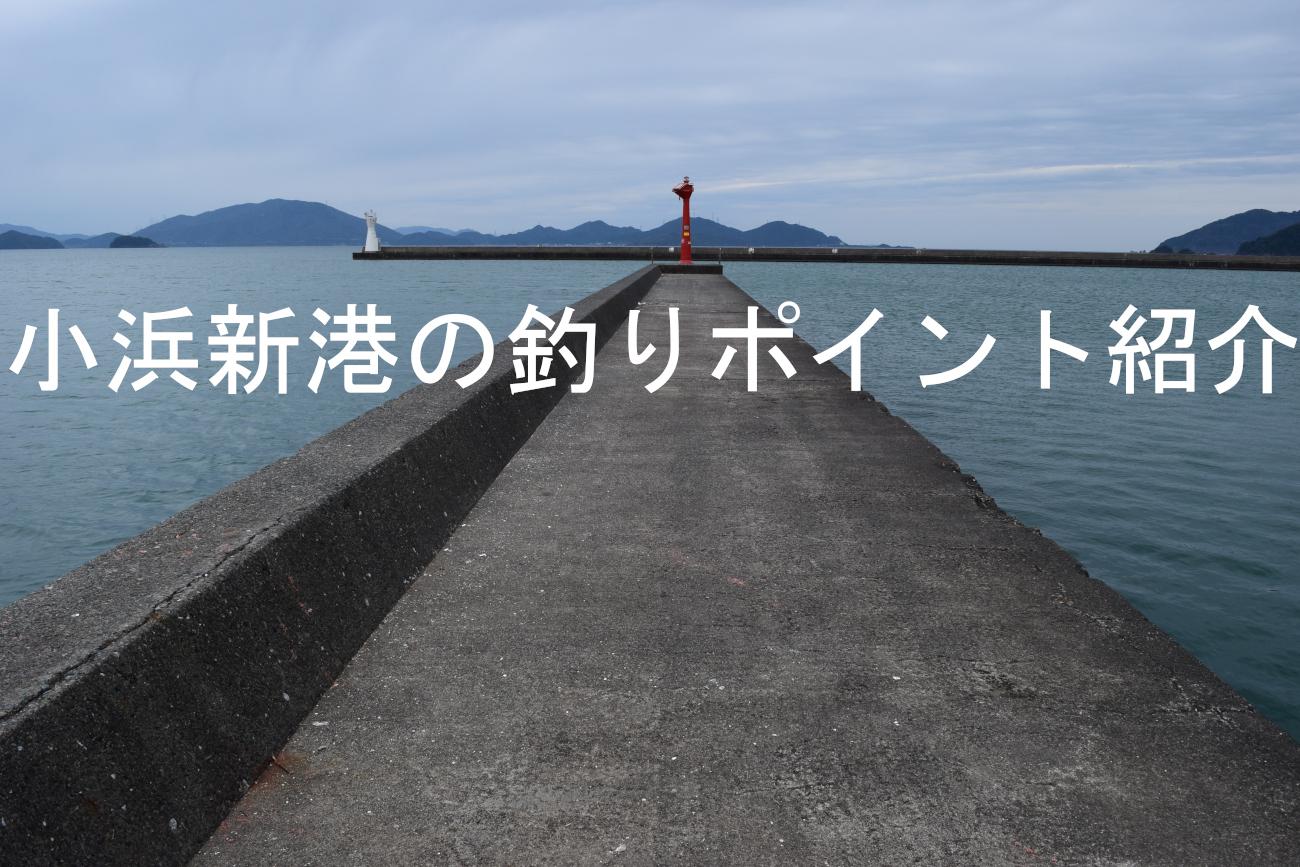 小浜新港アイキャッチ画像