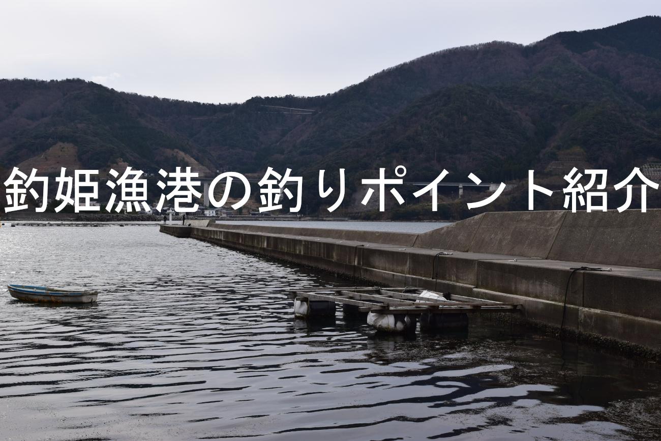 釣姫漁港の釣りポイントアイキャッチ画像