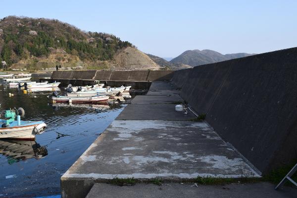小川漁港堤防全景