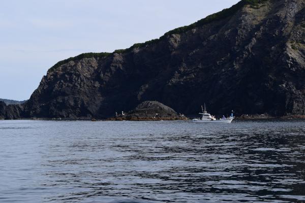 高茂岬の風景