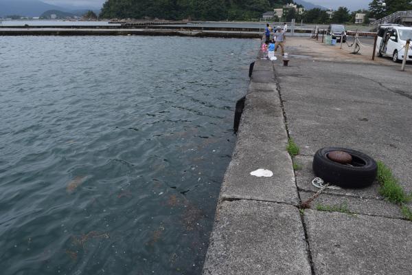 早瀬漁港岸壁