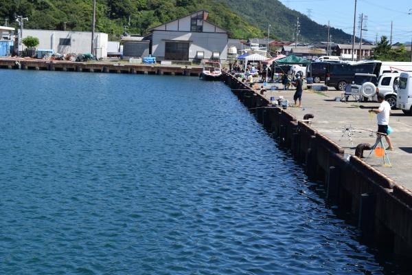 和田漁港の釣り場