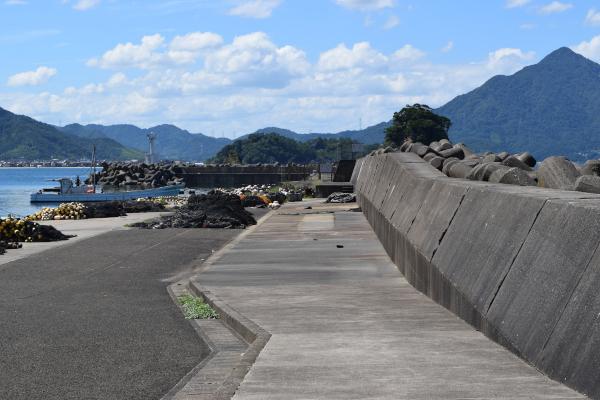 和田浜外堤防