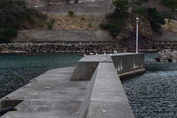 志積漁港突堤先端