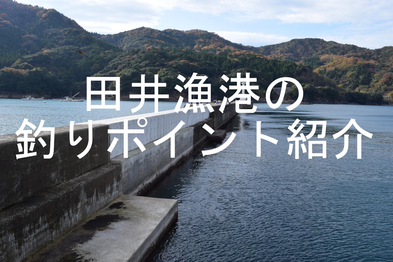 田井漁港のアイキャッチ画像
