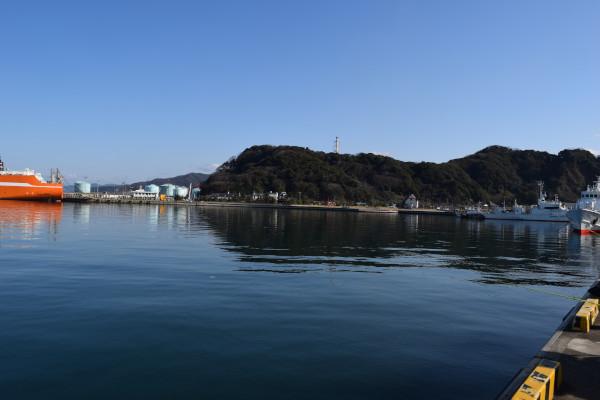 敦賀港の周辺