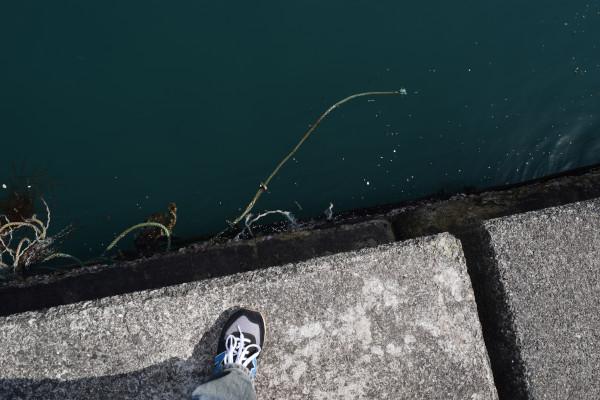 塩坂越漁港堤防の際
