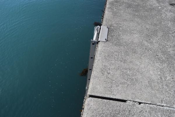 菅浜漁港外側のはしご