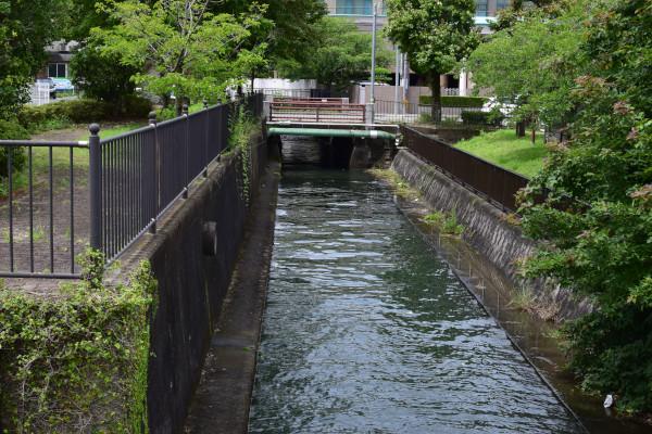 琵琶湖の流れ込み