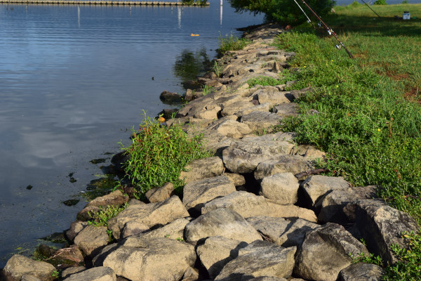 湖岸の石積