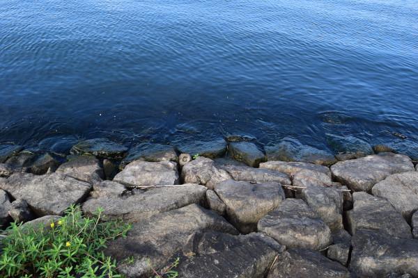 湖岸の石積み