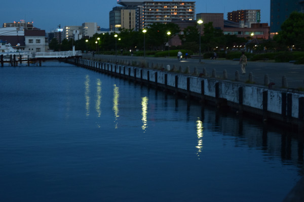 琵琶湖ホテル前の護岸