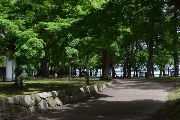 膳所城跡公園のランニング