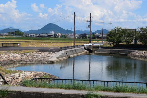 赤野井運河