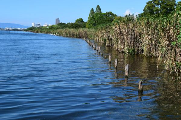 琵琶湖大橋方面