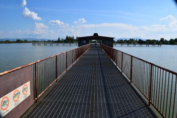 木浜内湖釣り桟橋