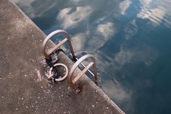 海野漁港内側のはしご