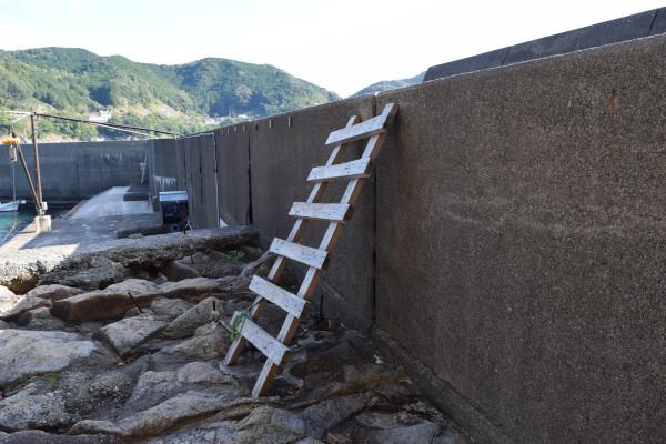 松崎漁港のはしご