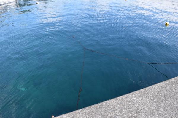 三木浦漁港の堤防