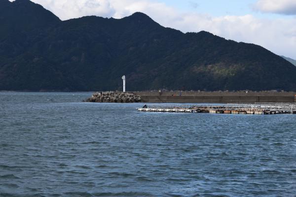 行野浦漁港堤防写真