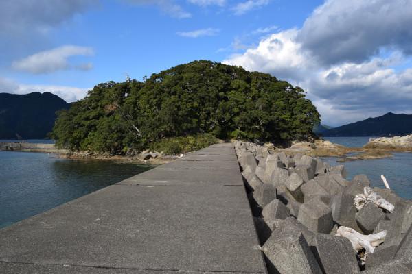 行野浦漁港の島