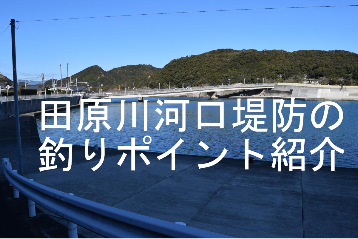 田原川河口堤防のアイキャッチ画像