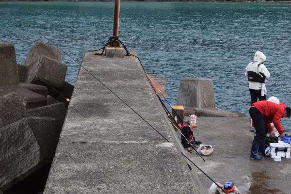 朝来帰漁港の先端