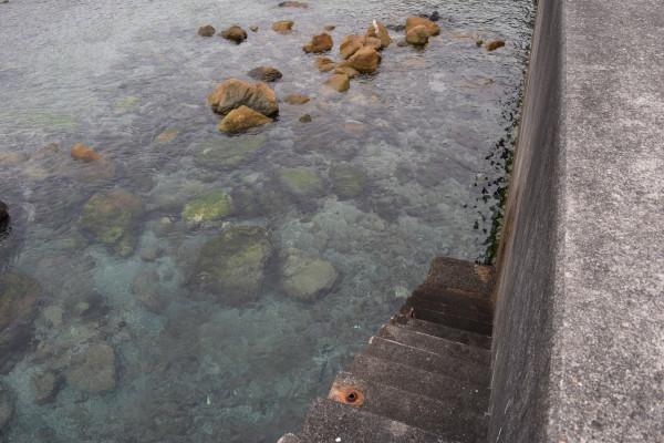 見老津漁港の浅場