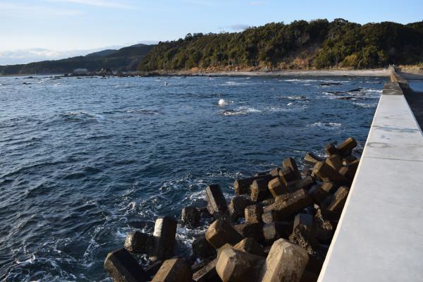 田並漁港の岩場