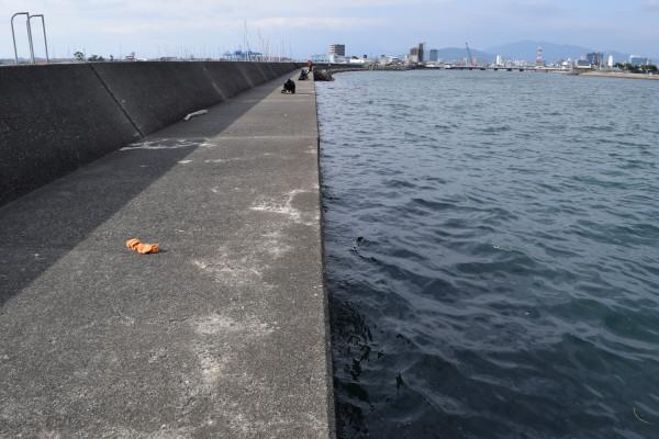 津ヨットハーバーの堤防