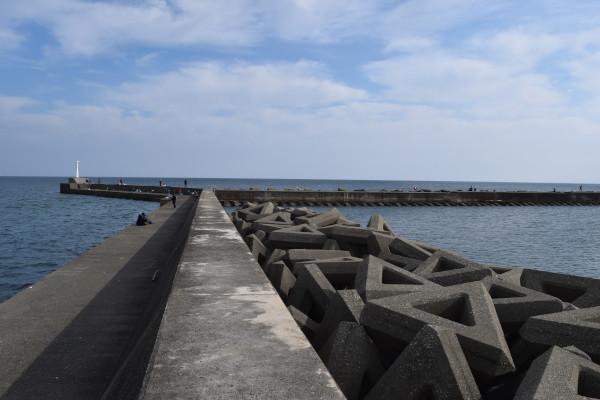 津ヨットハーバーの写真