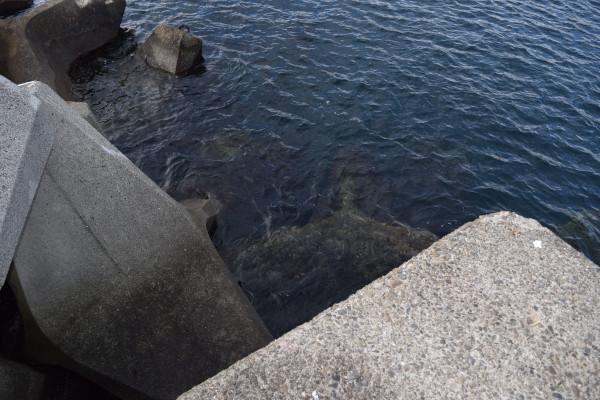 印南漁港赤灯台堤防先端
