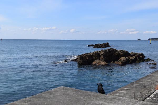 旗島の岩場