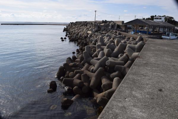 堺漁港堤防内側