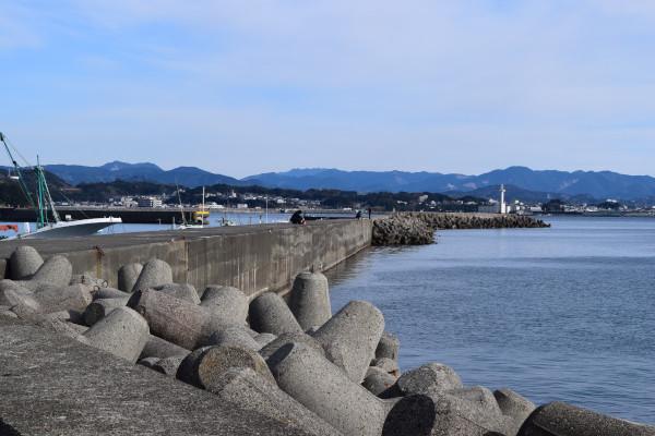 堺漁港堤防全景
