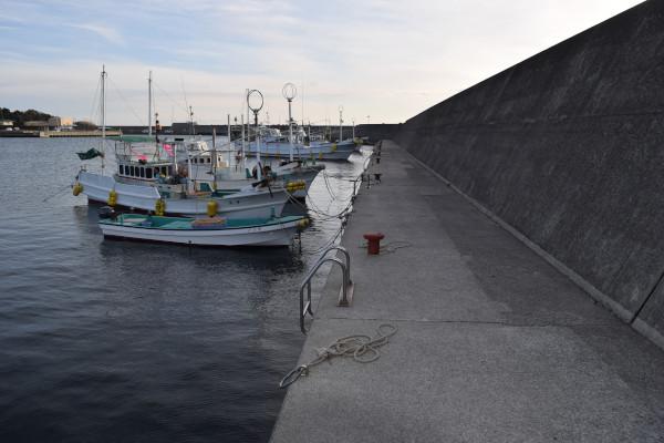 上野漁港内側の堤防付け根