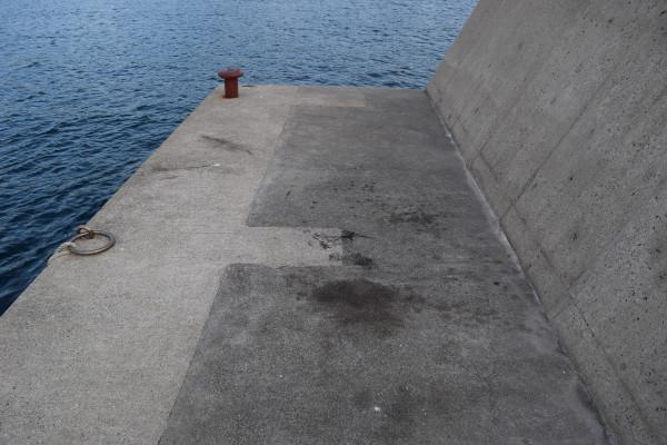 上野漁港内側の堤防のアオリイカ墨跡