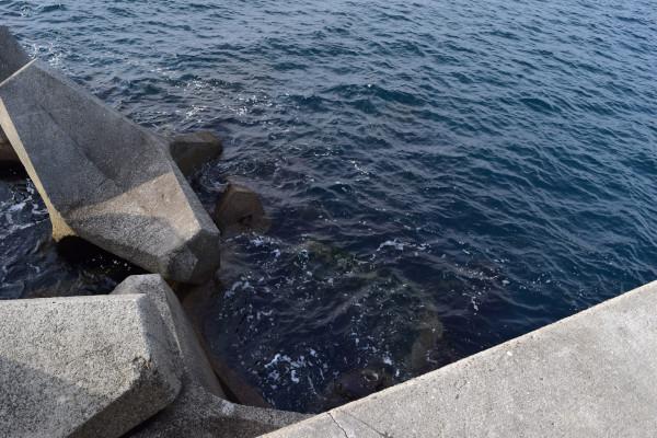 堤防の先端
