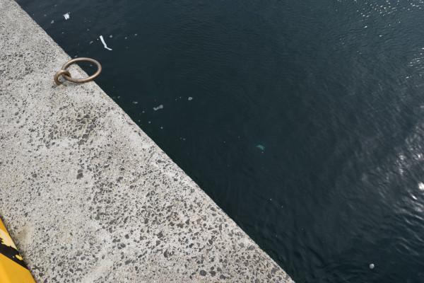 阿尾漁港内側の足元