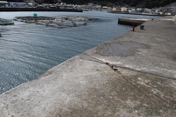 阿尾漁港堤防先端から根元を撮った写真
