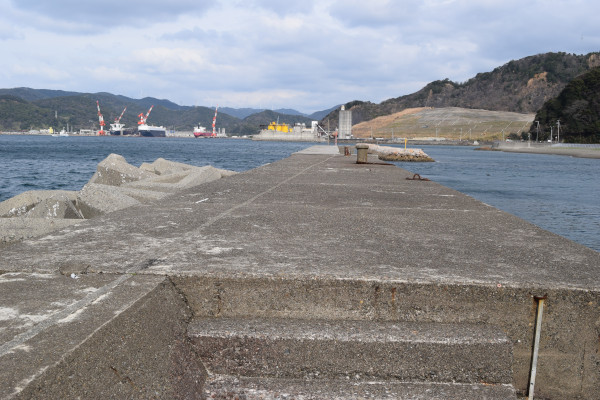 柏漁港の堤防
