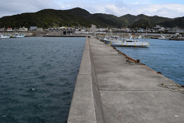 三尾漁港内側の堤防2