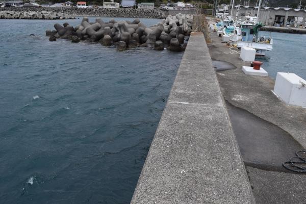 三尾漁港内側の堤防