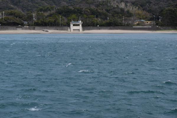 小浦漁港の北風