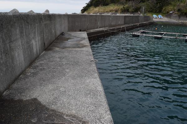 産湯漁港の先端からの写真