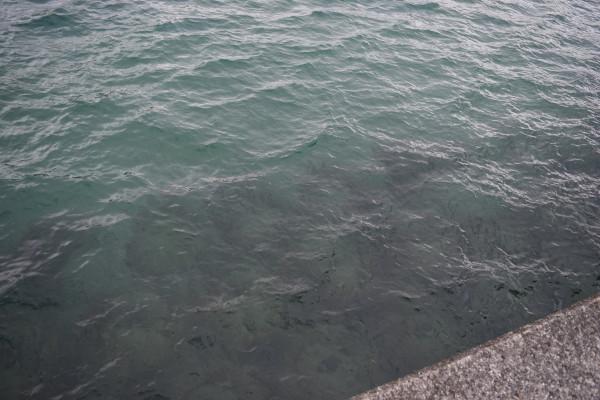唐尾漁港砂地