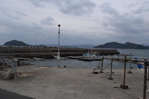 三尾川漁港全景