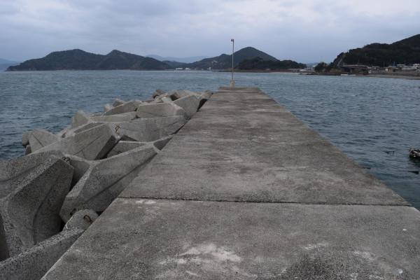 三尾川漁港堤防根元